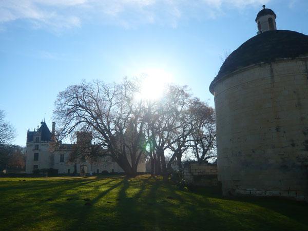 Château-de-Brézé-(1)
