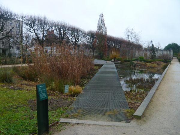 Jardin-des-Plantes,--Orléans-(2)