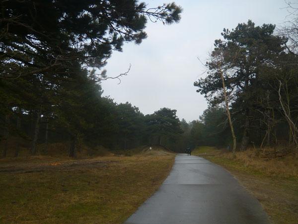 Parc-Domaniale-Bossen-(4)