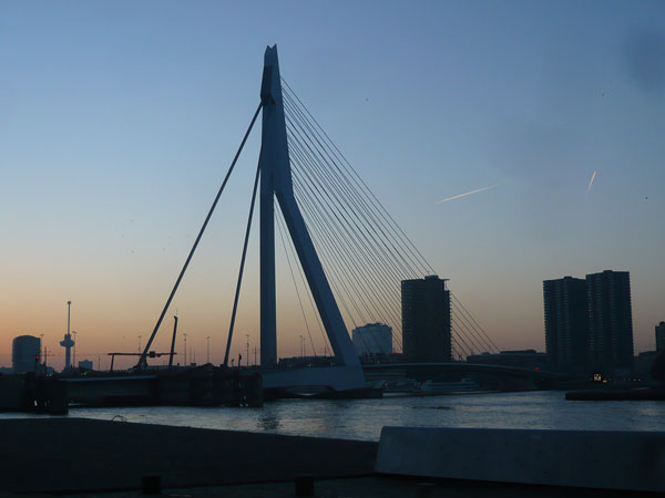 Pont-Erasmus,-Rotterdam