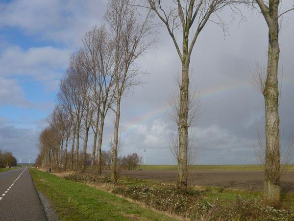 Arc-en-ciel,-Flevoland-(1)