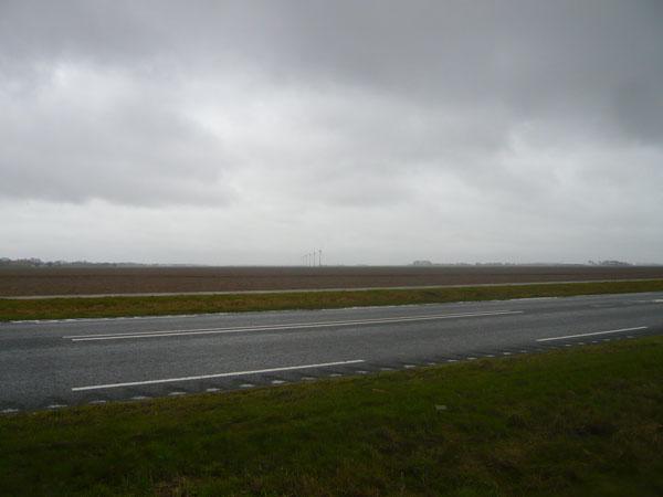 Paysage,-Flevoland-(2)