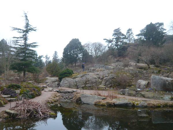 Rocaille,-Jardin-Botanique,