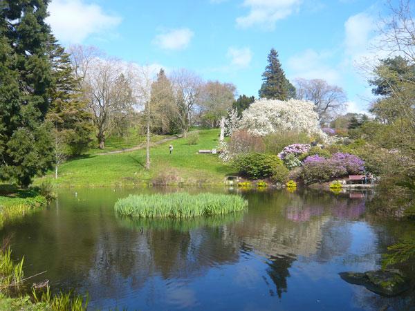 Jardin-Botanique,-Aarhus-(1