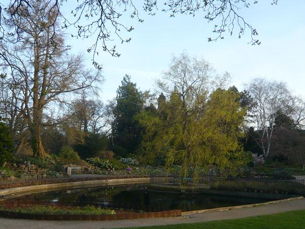 Jardin-Botanique,-Copenhagu