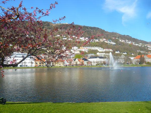 PlaceSmalungeren,-Bergen-(1