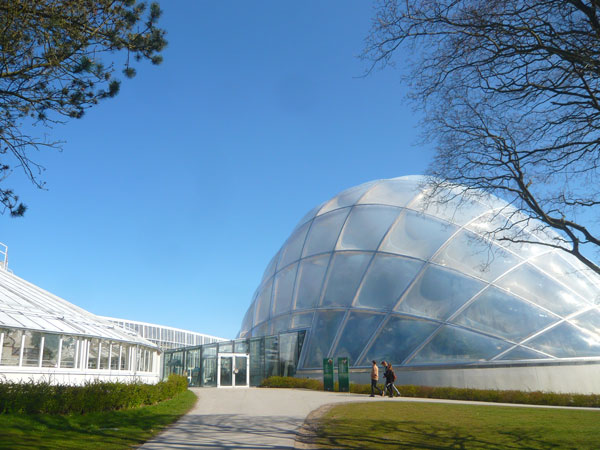 Serre-du-Jardin-Botanique,-