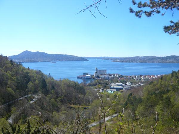 Vue-sur-Bergen-et-son-fjord