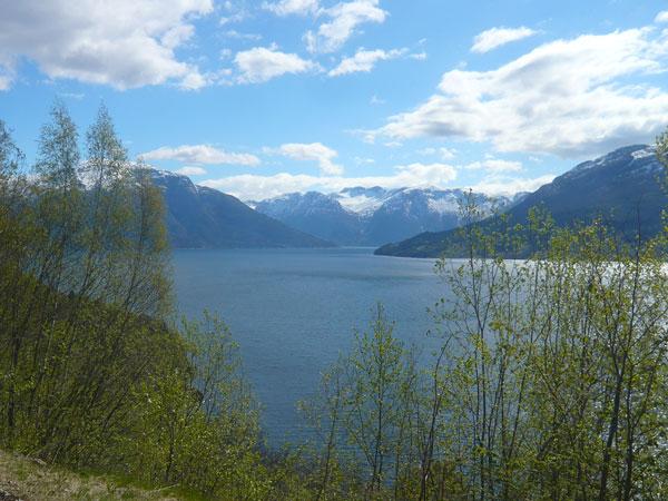 Paysage-Hardangerfjorden,-K