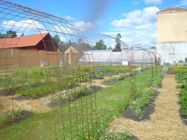Pergola-Jardin-Botanique,-O