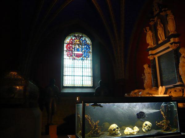 Aquarium-avec-têtes-de-mort