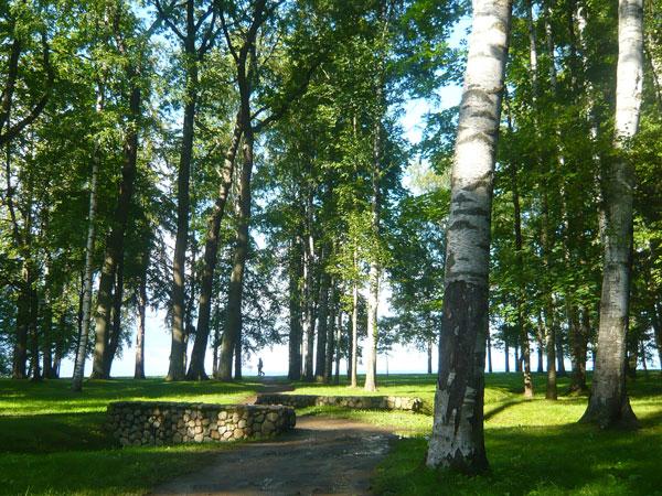 Lower-Park,-Peterhof,-Saint