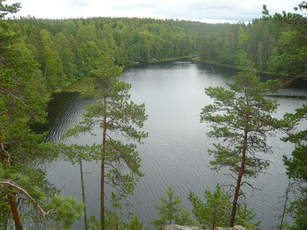 Vue-sur-le-lac-Haukkalampi,