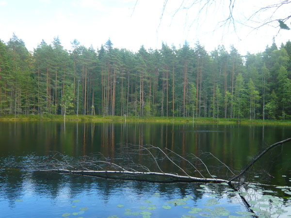 Vue-sur-le-lac-Kolmoislammi