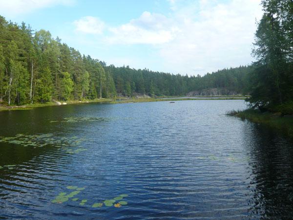 Vue-sur-le-lac-Musta,-Nuuks